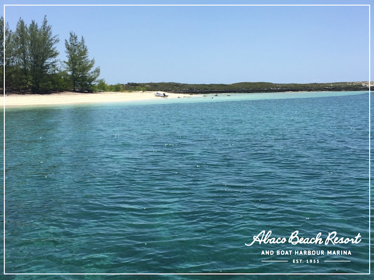 Abaco Beach Resort | Out Islands Bahamas Hotel