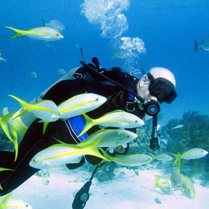 abaco-diving