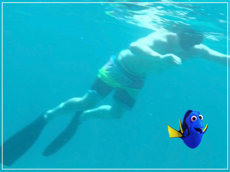 Abaco snorkeling